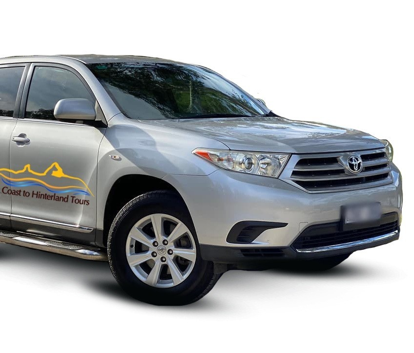Toyota Kluger | Coast to Hinterland Tours