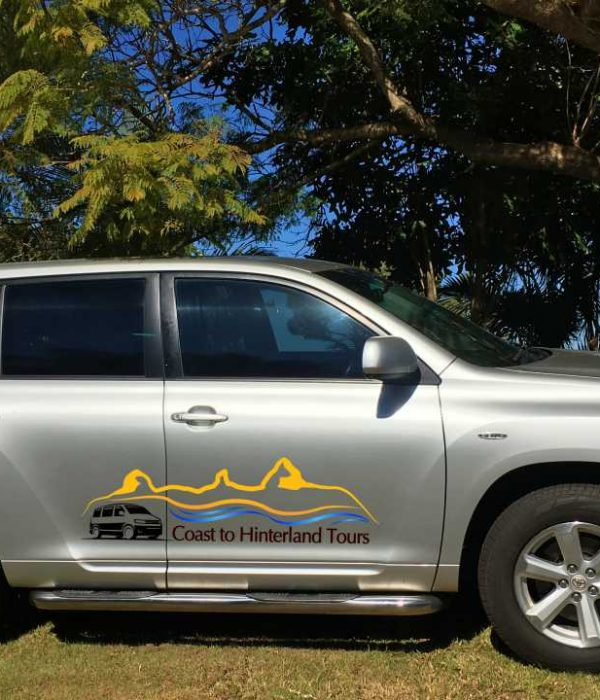 Coast to Hinterland Tours Private Tour