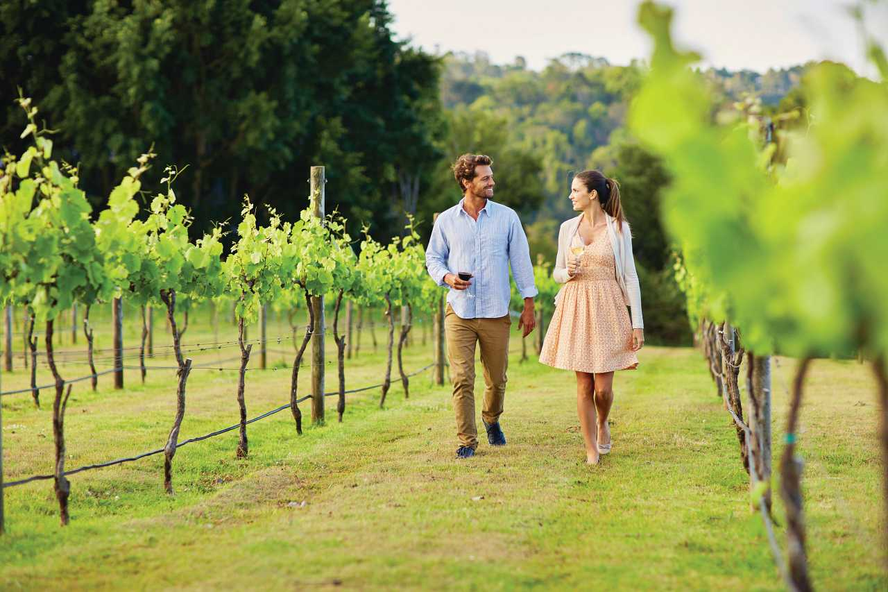 Flamehill Winery Wine Tour. Coast to Hinterland Tours