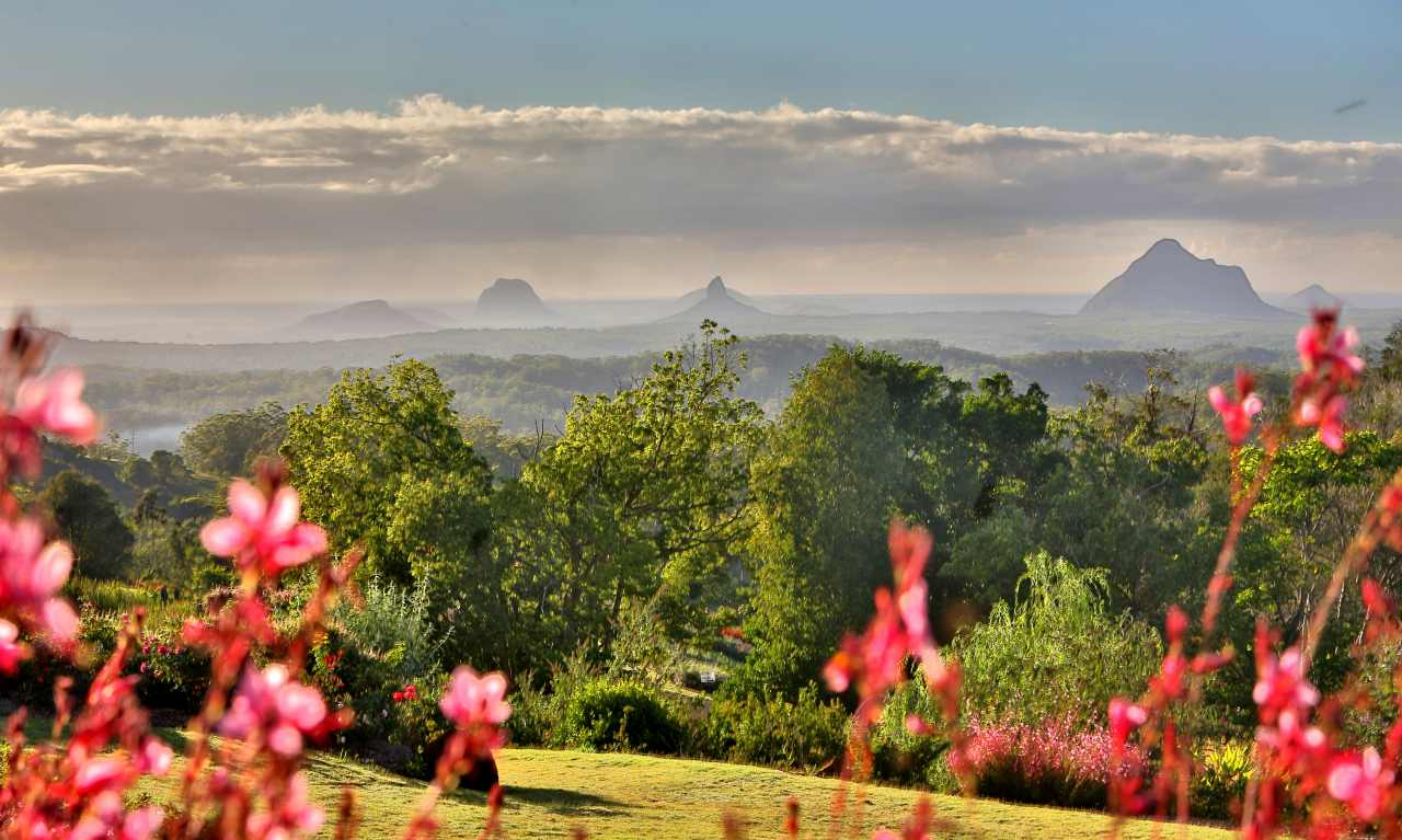 View from Maleny Botanic Gardens | Sunshine Coast