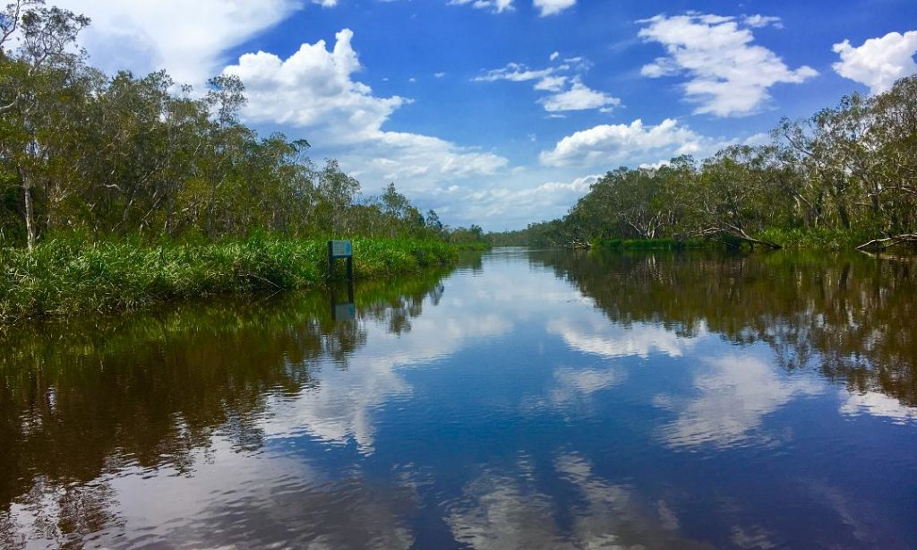 Noosa Everglades Day Tour Sunshine Coast