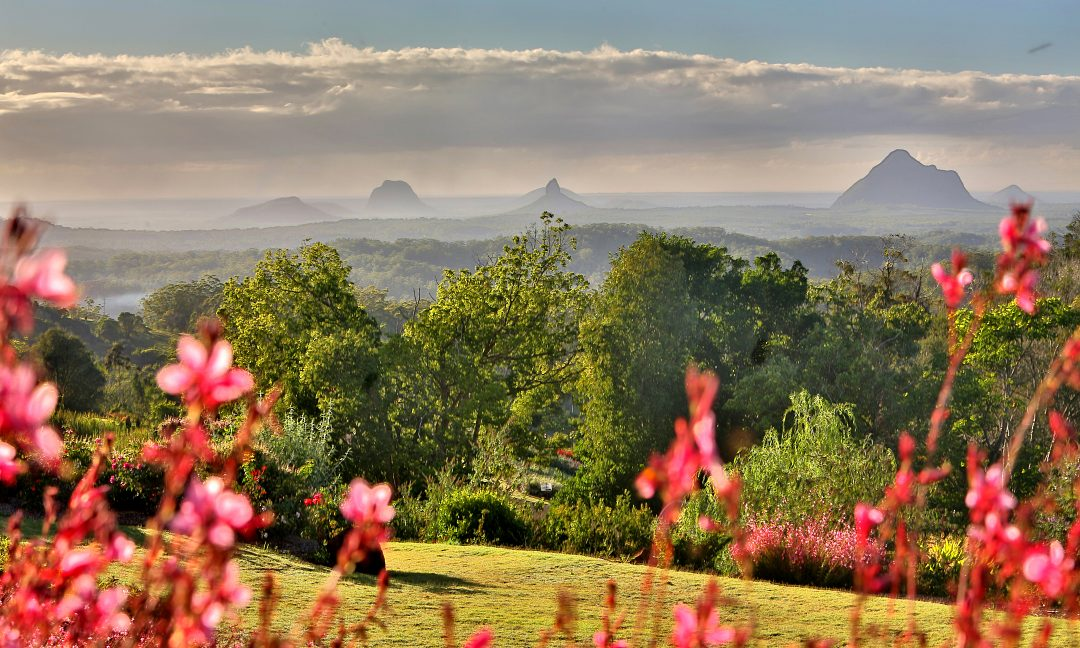 Sunshine Coast & Noosa Private Day Tour, Coast to Hinterland Tours. Mooloolaba, Noosa, Sunshine Coast Hinterland