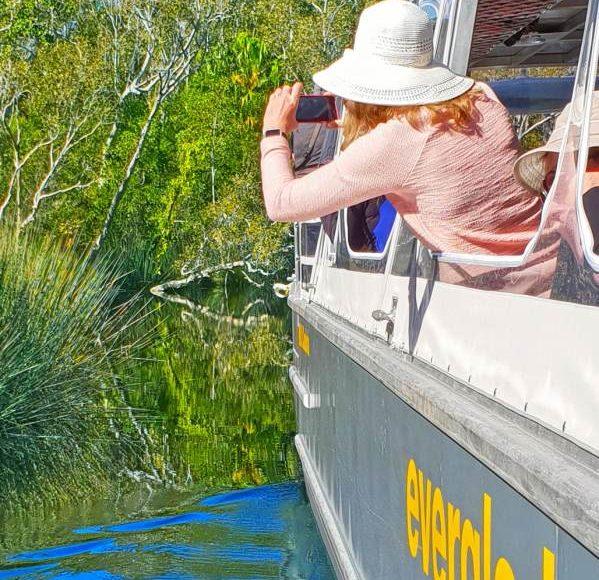 Noosa Everglades Tour – Cruise & Highlights