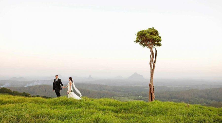 One Tree Hill, Sunshine Coast Hinterland