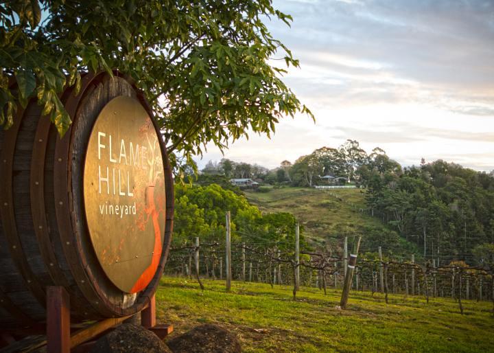 Flamehill, Sunshine Coast Wine Tour