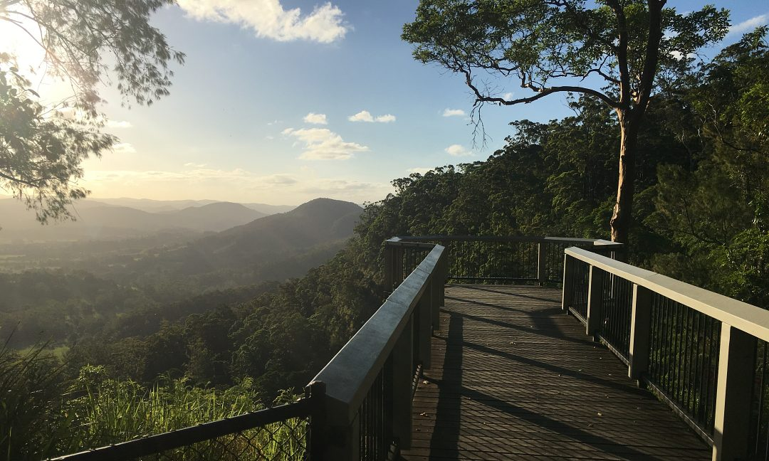High Tea & Wine Group Day Tour, Sunshine Coast Hinterland. Coast to Hinterland Tours, Queensland