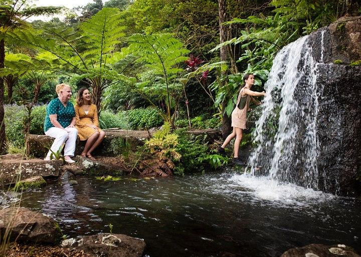 Maleny Botanic Gardens Day Tour | Coast to Hinterland Tours