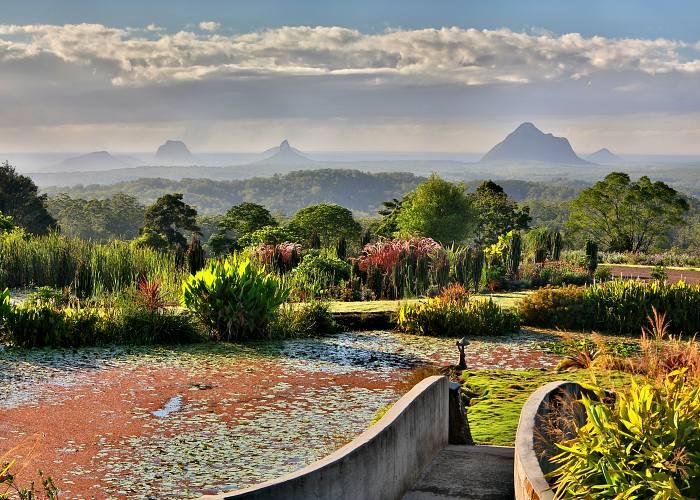 Maleny Botanic Gardens Day Tour