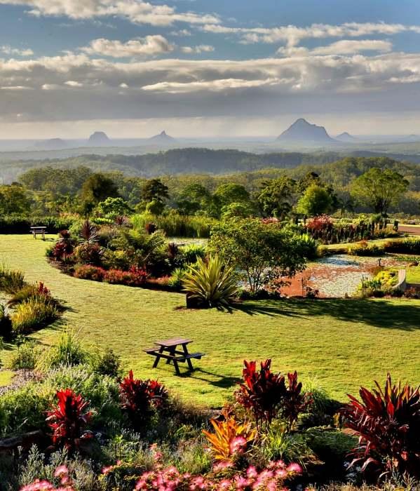 Maleny Day Tour – Botanic Gardens, Rainforest & Lunch